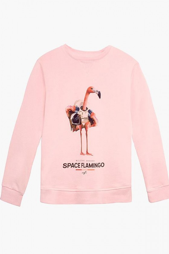 Space Flamingo sudadera...